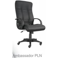 Ambassador PLN