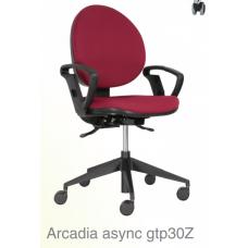 Arcadia async gtp30Z