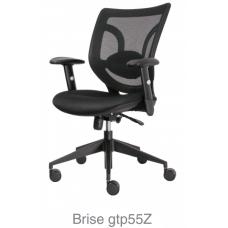 Brise gtp55Z