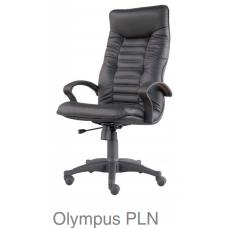 Olympus PLN