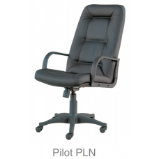 Pilot PLN
