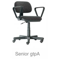 Senior gtpA
