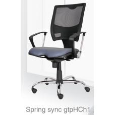 Spring sync gtpHCh1